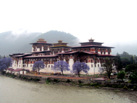 Dzong at Punakha